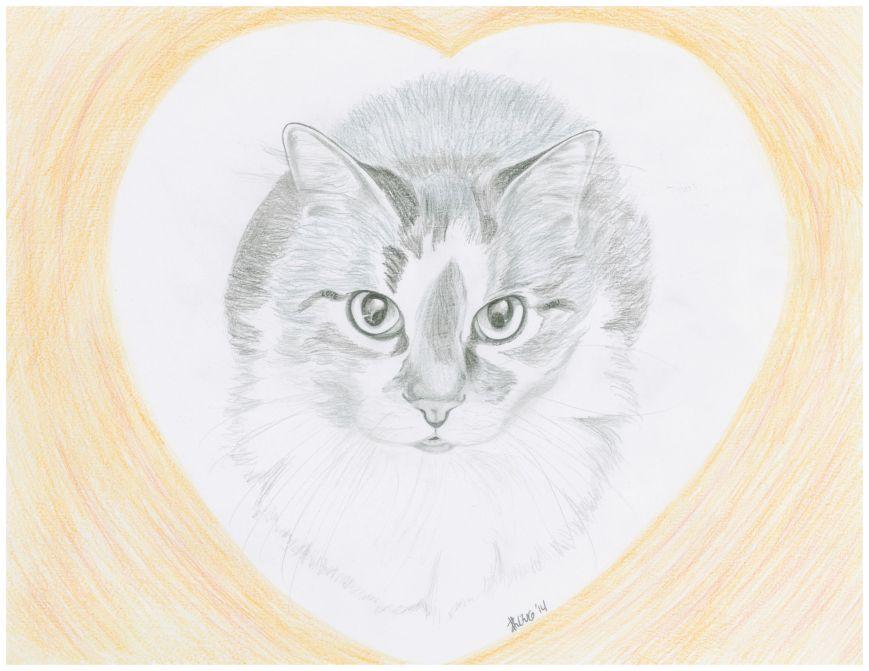 A kitty valentine